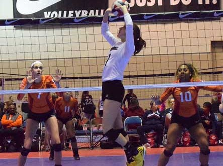 Skyline 16 Royal setter Callie Williams and the rest of her teammates earned one of the three bids, along with STL CYC. The teams played in the semis. (Photo courtesy of Skyline)
