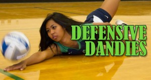 pv_article_defensivedandies