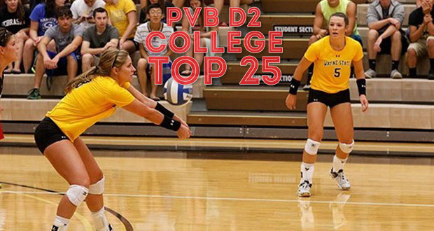 Wayne State passed many teams in this week's Top 25, jumping from No. 19 to No. 7 after upsetting Southwest Minnesota State. (Wayne State Athletics)